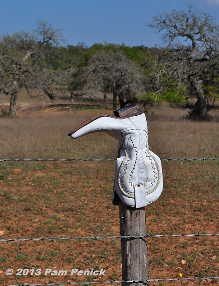 Kicking Around The Texas Hill Country Looking For